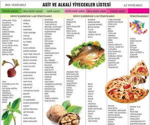 Alkali beslenme
